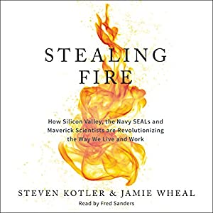 Stealing Fire Hörbuch