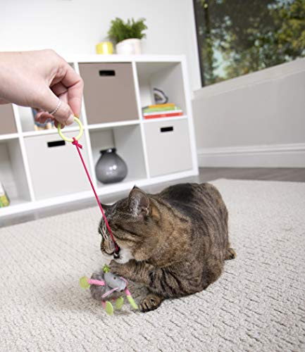 SmartyKat Interactive and Wand Cat Toys 10