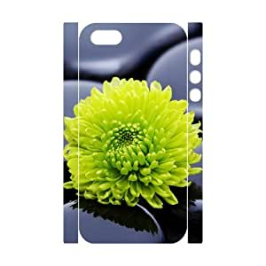 3D Sexyass Stone IPhone 5,5S Cases Black Zen Stones and a Yellow Mum Cute for Girls, Case for Iphone 5s Cheap, [White] WANGJING JINDA