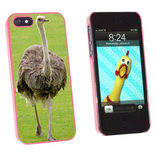 Graphics and More Emu Ostrich Bird Snap-On Hard Protective Case for Apple iPhone 5/5s - Non-Retail Packaging - Pink