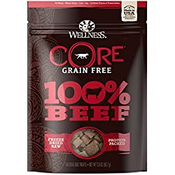 Wellness Natural Pet Food Core Grain Free 100-Percent Beef Freeze Dried Dog Treats, 2 oz