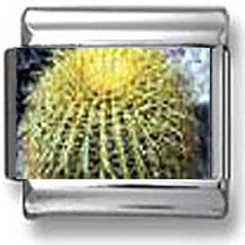 italian charms cactus - 7