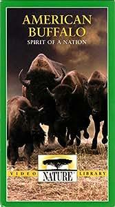 Nature: American Buffalo Spirit of a N [VHS]