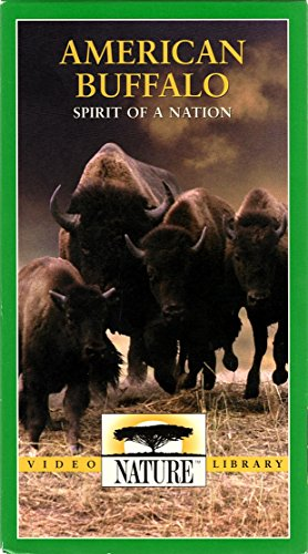 Nature: American Buffalo Spirit of a N [VHS]