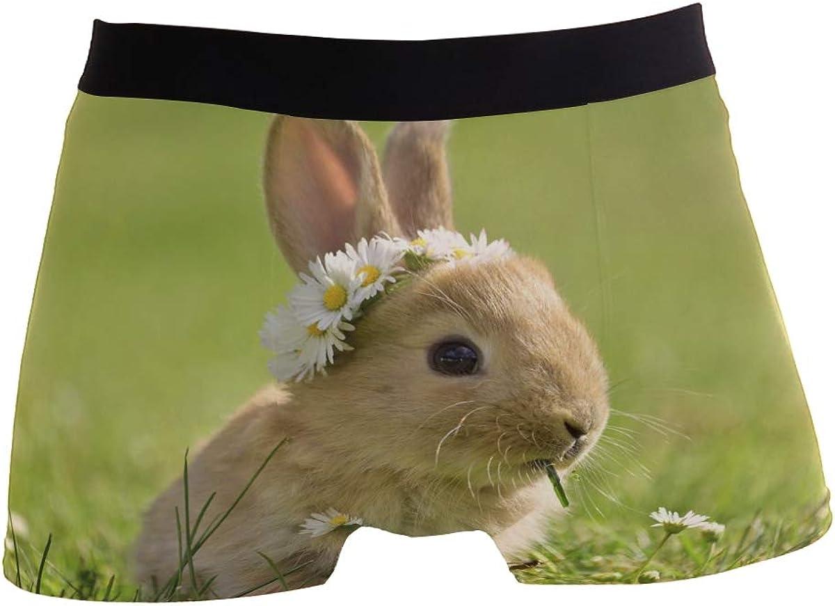 Daisy Coronet Bunny in Grass Men/'s Underwear Boxer Briefs Polyester Spandex Pouch,2-Pack