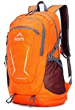 Venture Pal Large 45L Hiking Backpack - Packable Lightweight Travel Backpack Daypack
