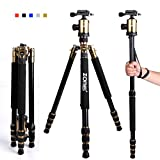 "Zomei Z818 65-inch Lightweight Camera Tripod, Aluminum Portable Detachable Monopod, 360 degree Ball Head, 1/4"" Quick Release Plate with Carrying Bag for Canon Nikon Sony - 33lbs(15kg) Load (Golden)"