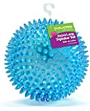 "Gnawsome Large Squeaker Ball Dog Toy, Extra Large 4.5""h, Colors will vary"