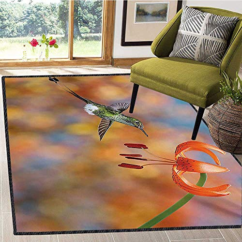 Hummingbird, Area Rug Pad, The Booted Racket Tail Feeding Nectar from Tiger Lily Blur Background Photo, Children Kids Nursery Rugs Floor Carpet 5x6 Ft Orange - Tiger Nursery Lily