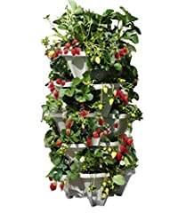 5 Large Heavy Duty Mr Stacky Planters. Great for growing almost anything (strawberries, herbs, succulents, flowers, peppers, tomatoes, lettuce, and much more). Saves a ton of space while maximizing your growth in that space. Waters from the t...