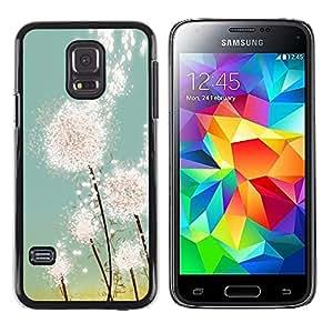 iKiki Tech / Estuche rígido - Dandelion Sun Painting Summer Spring - Samsung Galaxy S5 Mini, SM-G800, NOT S5 REGULAR!
