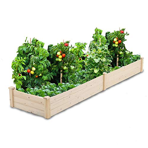 ed Garden Bed Planter Kit Patio Elevated Box for Vegetable Flower ()