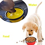 Comsun-Large-Size-Collapsible-Dog-Bowl-Food-Grade-Silicone-BPA-Free-FDA-Approved-Foldable-Expandable-Cup-Dish-for-Pet-Cat-Food-Water-Feeding-Portable-Travel-Bowl-Blue-and-Green-Free-Carabiner