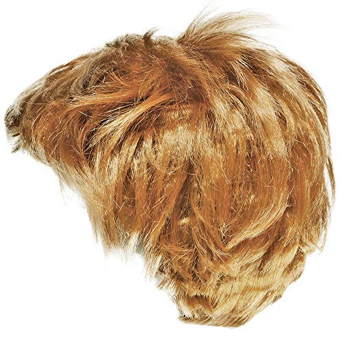 Funny Party Hats The Billionaire Wig - Mr. President Wig - Costume Wigs - Costume Accessories ()