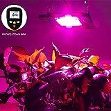 COB LED Grow Light Full Spectrum, CANAGROW 100W