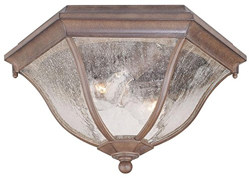 Acclaim 5615ABZ Flush Mount Collection 2-Light Ceiling Mount Outdoor Light Fixture, Architectural Bronze by Acclaim
