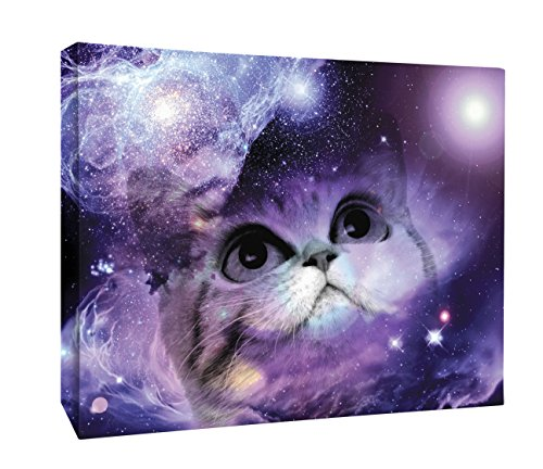 JP London  Fantasy Kitty Cat Kitten in Space Canvas Art Wall Decor - Fantasy Wall Art
