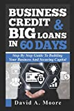 Business Credit & Big Loan in 60 Days: Step by step guide to building your business and securing capital