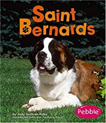 Saint Bernards (Dogs)
