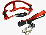 Freedom No Pull Velvet Lined Dog Harness and Leash Training Package Red Large