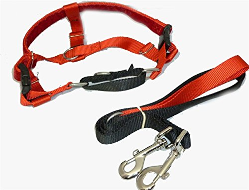 Freedom No Pull Velvet Lined Dog Harness and Leash Training Package Red XL