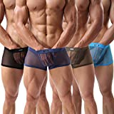 Evankin Men's Boxers Sexy Underwear Mesh Breathable Gay Low Rise Boxer Briefs(36Hei,XL)(Pack of 4)