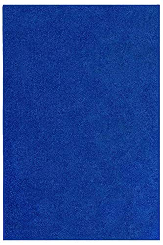 (Ambiant Pet Friendly Solid Color Neon Blue 2'X3' - Area Rug)