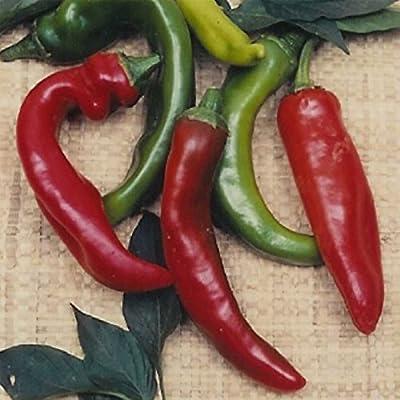 Anaheim Chili Hot Pepper Garden Seeds - Non-GMO, Heirloom Vegetable Gardening Seeds