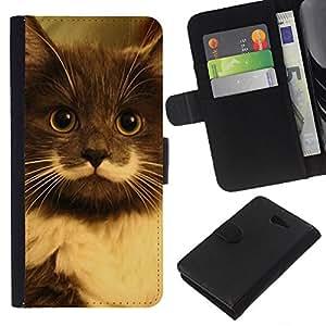 Hamilton Hipster Cat Moustache Longhair - la tarjeta de Crédito Slots PU Funda de cuero Monedero caso cubierta de piel Sony Xperia M2