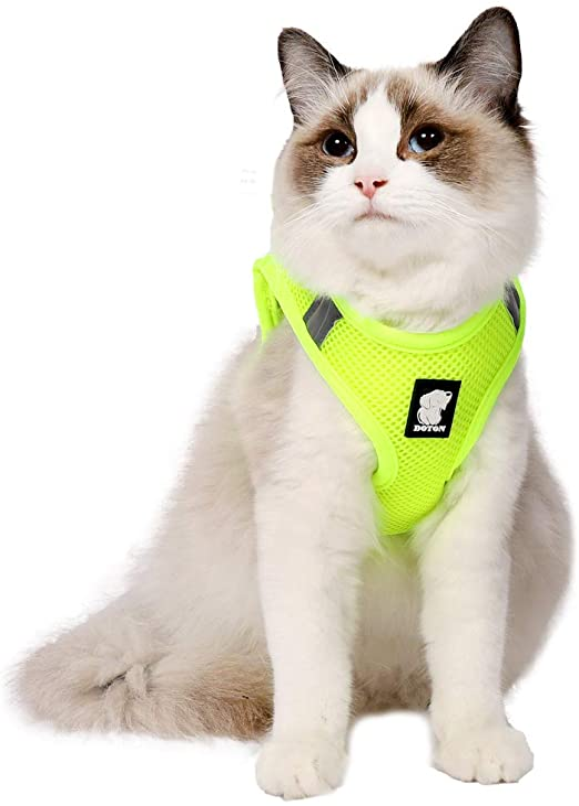 EVEL Conjunto de arnés y Correa para Gato Chaqueta de Chaleco Acolchada de Malla Suave Ajustable Reflectante a Prueba de Escapes para Mascotas Cachorro Gatito Caminata al Aire Libre: Amazon.es: Productos para
