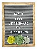 Letter Board –374 Letters, 3 Felt Succulents, Wall Mount & Canvas Bag | Word Board | Letterboard | Sign Board | Changeable Felt Message Board | Marquee Sign | Felt Board (Gray, 12 x 16)