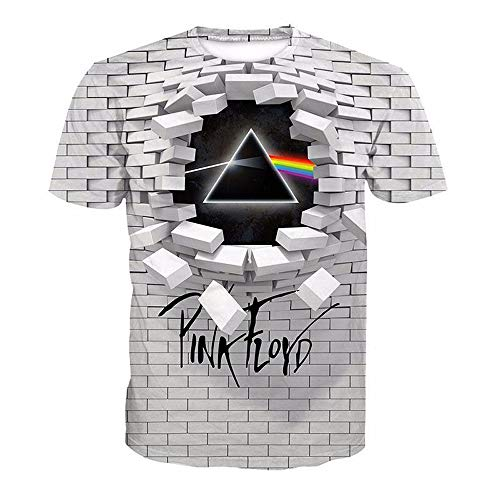 lvyouyouMM Fashion Unisex Pink Floyd 3D Print T Shirt,Graphic Pattern Crewneck Short Sleeve Tees (L, White)