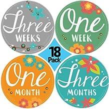 "NEW! Stick'Nsnap(TM) 18 (12+6 bonus) ""Blooming Flowers"" Pastel milestones monthly growth stickers. 4'' inch diameter. To put on bodysuit creeper bibs bottoms or ONESIE. Great Shower Gift!"