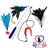 Pet Fit For Life 4 Piece Dual Rod Feather Teaser and Exerciser For Cat and Kitten - Cat Toy Interactive Cat Wand
