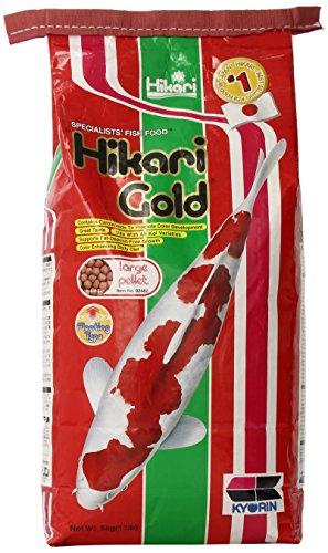 Hikari Usa Inc AHK02482 Gold 11lb Large by Hikari Usa Inc.
