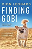 10-finding-gobi-a-little-dog-with-a-very-big-heart