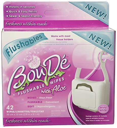 Amazon.com: BouDe White Bathroom Wipe Dispenser With 42 Flushable Wipes by BOU DE: Health & Personal Care