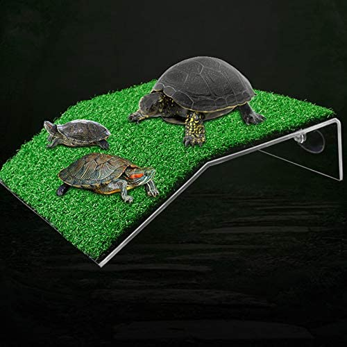 Baoblaze Hanging Tortoise Resting Acrylic Ramp Amphibian