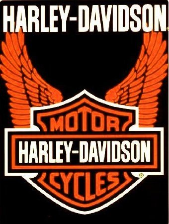 Harley Davidson Orange Wings Super Plush Throw