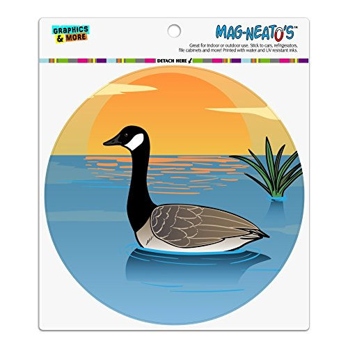 Goose Magnet - Canadian Goose Geese Swimming Canada Automotive Car Refrigerator Locker Vinyl Circle Magnet