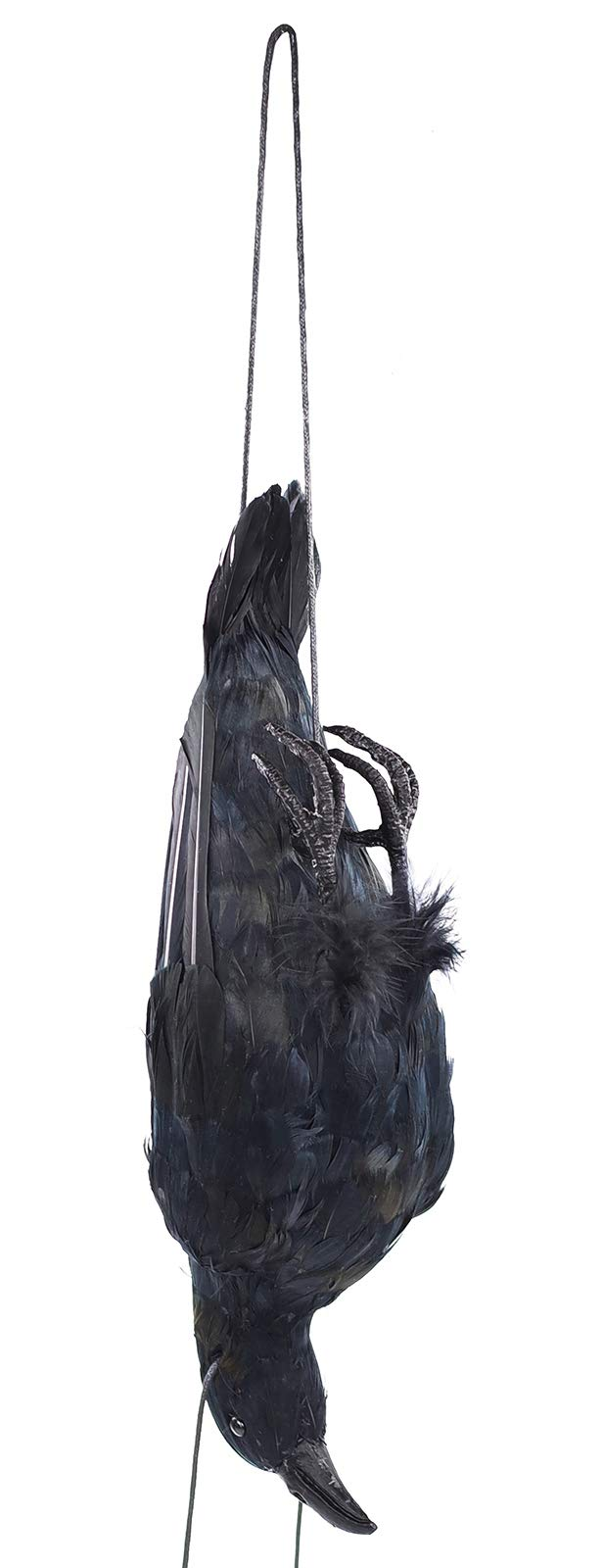 17 inch Realistic Hanging Dead Crows Decoy Lifesize Extra Large Black Feathered Scare Deterrent Crow by Festar