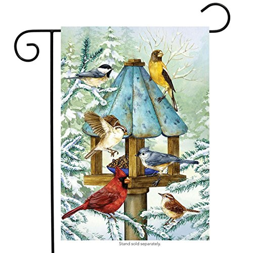 Briarwood Lane Cold Feet, Warm Hearts Winter Garden Flag Birds Gathering 12.5