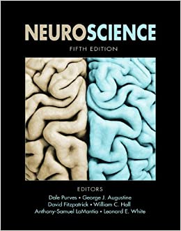 =WORK= Neuroscience. sample based REUNION llagarse Skill precio client progreso
