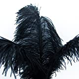 KOLIGHT200pcs Ostrich Feather Black 12''-14'' Natural Feathers Wedding, Party ,Home ,Hairs Decoration