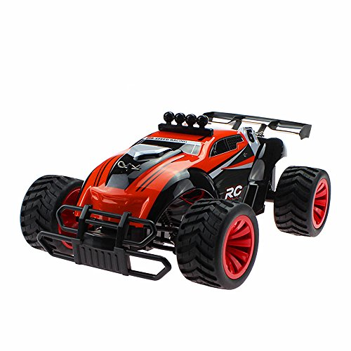 FLYZOE Remote Control Car 2.4GHz 1:16 High Speed Wireless Electric Off Road Racing Truck