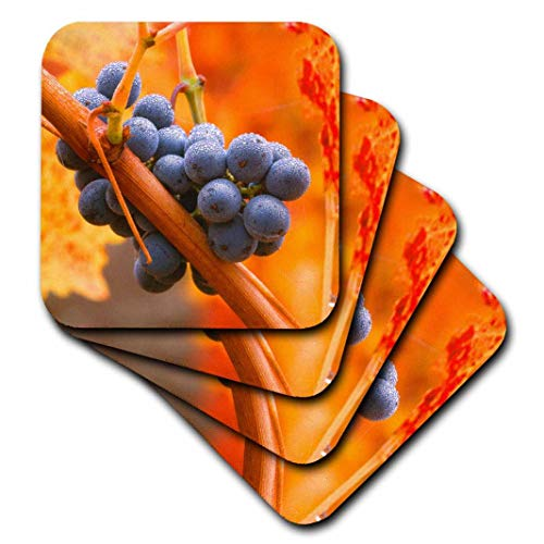 Napa Valley Vineyards Cabernet - 3dRose cst_258871_2 California, Napa Valley, dew on cabernet grapes in autumn vineyard, set of 8 Soft Coasters