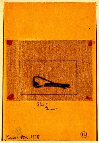 お気にいる 1878 Japanese Print Japanese。Adze B011WONV7G &クリーナー Print。Adze B011WONV7G, がいや酒店:7f6506e8 --- a0267596.xsph.ru