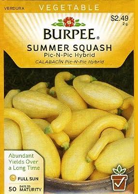 Burpee 53217 Squash, Summer Pic-N-Pic Hybrid Seed Packet