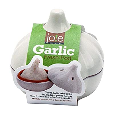 MSC International Terracotta Garlic Keeper, White