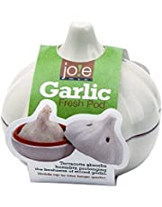MSC International Terracotta Garlic Keeper, White